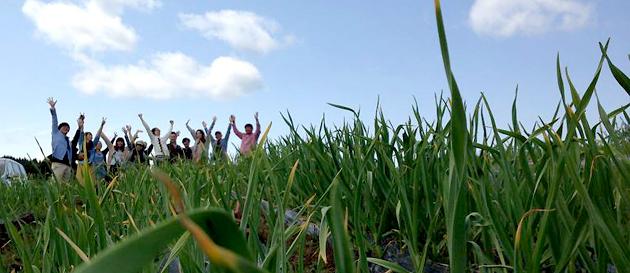 プロジェクトメンバーのニンニク畑